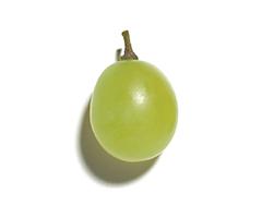 Extrait de raisin